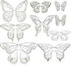 Butterfly!~! by WalkInnatJar
