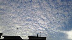 A different kind of clouds #clouds #sky #sunset #nature #sun #beautiful #landscape #nofilter #weather #skyporn #view #picoftheday #photooftheday #amazing #skyline #cielo #nuvole #tramonto #instagood #beauty #magic #romagna #emiliaromagna #vivorimini #rimini #ig_rimini #ig_italia @romagna_travel by em_cee_84