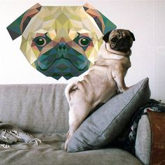 Decorationideas for animal Lovers! Find your perfect and individuell sticker!