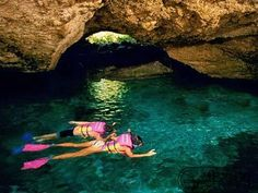 Xcaret $90.00 Tour or less... check prices at http://www.mexicodestinos.com/Cancun/tours/Xcaret.html