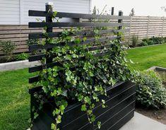 Garden Yard Ideas, Garden Boxes, Garden Design, House Design, Outdoor Lounge, Garden Inspiration, Curb Appeal, Exterior Design, Greenery