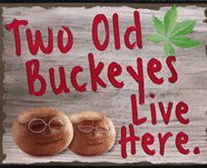 Two Old Buckeyes wood sign, ohio state buckeye gift This will be me and Danno soon :) Buckeyes Football, Ohio State Football, Ohio State University, Ohio State Buckeyes, Football Stuff, Ohio State Decor, Ohio State Crafts, Ohio State Baby, Buckeye Crafts