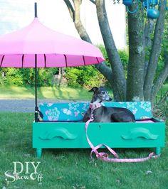 Wie aus einer Schublade ein Hundebett wird. / Fer d'un calaix vell un llit de gos o de gat.