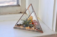 Handmade sculptural glass terrarium - add some style... and greenery to your home.