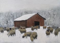 A cold winter barnyard with sheep foraging while awaiting feeding