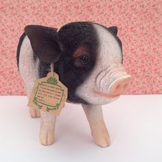 Micro Pig Pet Bank is super cute for super savers. www.oinkypigmoneyboxes.com.au