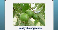 mga bugtong na may larawan at sagot - - Yahoo Image Search Results Yahoo Images, May, Certificate, Image Search