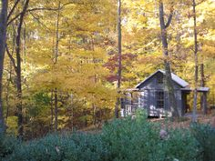 A cabin in the woods in Chagrin Falls Ohio!