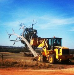 Our LiuGong wheel loader (#loader) pushes out a #tree. Feel the #Power :) :)