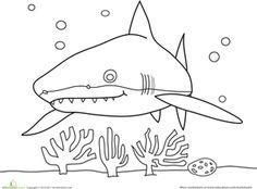 shark coloring page  Google Search  TEACH  Pinterest  Sharks