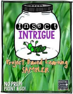 Here's a little science freebie--a sampler from a larger project-based learning unit. Inquiry Based Learning, Cooperative Learning, Project Based Learning, 4th Grade Science, Kindergarten Science, Teaching Science, Insect Activities, Kid Experiments, 2nd Grade Classroom