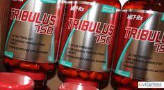 Você já ouviu falar no Tribulus?
