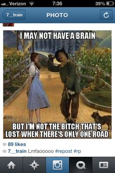 All Things Wizard of Oz — This is how I feel today with some people here at. Gemeiner Humor, Mean Humor, Funny Humor, Funny As Hell, The Funny, Funny Shit, Inspirational Quotes For Kids, Lol So True, Wizard Of Oz