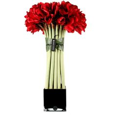 Herve Gambs Giant Red Couture Amaryllis Topiary & Black Glass Cube (99 KWD) ❤ liked on Polyvore featuring home, home decor, floral decor, flowers, plants, fillers, decor, accessories, red and fake flower bouquets