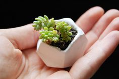 Tiny Polymer Clay Pots | 23 Adorable DIY Ways To Show Off Your Plants