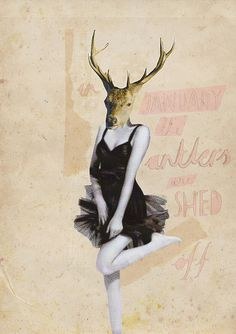 """""""in january the antlers shed off"""" by the secret tea party"""