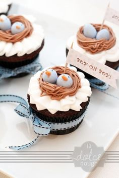 Bird's Nest Twin Baby Shower Cupcakes Visit Waverider @ http://www.waveridermp3.com #twins #brainwave #cupcakes With a pink and blue egg in the nest!