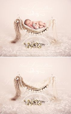 Iron Bed Chair With Flowe And Wooden Sticks - Beautiful Digital background backd. Cute Baby Pictures, Newborn Pictures, Baby Photos, Family Pictures, Baby Photography Poses, Children Photography, Digital Photography, Newborn Posing, Newborn Twins