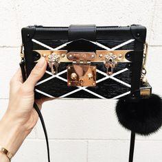 Hello, beautiful. Love this little Louis Vuitton.