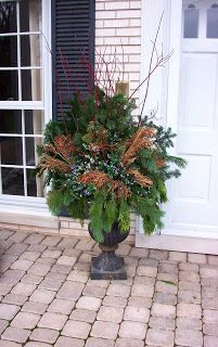 More Winter Container Gardening