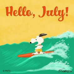 Sur's up for Snoopy on the first day of July. Charlie Brown Cafe, Charlie Brown And Snoopy, Happy Birthday Wishes Sister, Happy Birthday Messages, Peanuts Cartoon, Peanuts Snoopy, Snoopy Cartoon, Snoopy Love, Snoopy And Woodstock