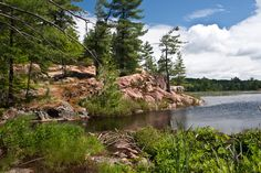 Cranberry Bog - Killarney Provincial Park Group of 7 painted here.  Nice Hike! A.J. Casson