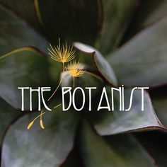 The Botanist, Los Altos The Locals, Maine, Eat, Business, Inspiration, Biblical Inspiration, Store, Business Illustration, Inspirational