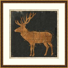 14659 Stag Diagram 2 - Game - Animals - Our Product W 32.5 H 32.5 #WildGame $370