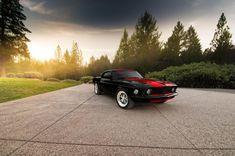 Dark Horse Customs 69 Mustang Mach 1, Ford Mustang Boss, Dark Horse, Dream Cars, Horses, Gallery, Roof Rack, Horse