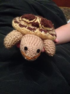 Tortoise,also made him a piece of melon