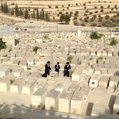 Mt. of Olives -  The Mount has been used as a Jewish cemetery for over 3,000 years, and holds approximately 150,000 graves, making it central in the tradition of Jewish cemeteries.