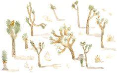 Mariko Jesse painting of Joshua Trees