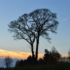"""Guten Morgen. Sonnenaufgang über """"In der Rot"""" am #Pulvermaar in der #Vulkaneifel  https://www.facebook.com/Feriendorf.Pulvermaar"""