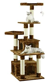 67 Best Happy Pet Post Cat Scratching Post Reviews Images In