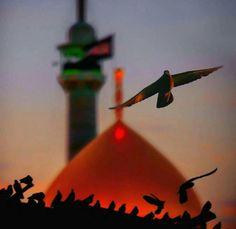عــلى جنونِ العشــقِ لا نلامُ كــعابسً هاج بنا الغــرام ❤ هو الحسينُ مالنا سواه وحبــه اوجـبه الاله