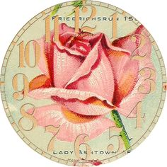 Antique Seed Catalog Reinvented: 1914 Miss Ella V. Baines Rose Clocks No 2 of 4