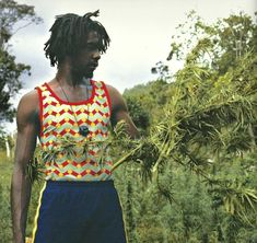 Rastafari Art, Rastafarian Culture, Reggae Bob Marley, Famous Legends, Dennis Brown, Peter Tosh, Reggae Artists, Robert Nesta, Jamaican Music