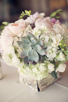 Succulents and loads of pretty petals wrapped in birch bark -- Would be amazing centerpieces Floral Wedding, Wedding Flowers, Blush Flowers, Pastel Flowers, Cream Flowers, Vintage Flowers, Wedding Dresses, Wedding Centerpieces, Wedding Decorations