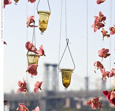 String orchids or whichever flowers strike your fancy up with candleholders to add ambience to any area. String a few flowers from an awing, an archway or anywhere else you want to decorate.