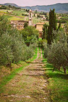 Mostly Italy   Volpaia (Tuscany)