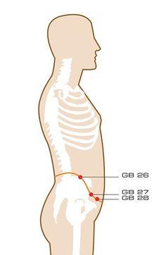 GB 26: dai mai / Girdling VesselFunction: Regulates the uterus, resolves damp-heat, regulates the Girdling Vessel.Indications: Irregular menstruation, amenorrhea, leukorrhea, abdominal pain, hernia, pain in the lumbar and hypochondriac region.GB 27: wu shu / Fifth PivotFunction: Strengthens the lumbar and boosts the Kidneys, courses the Liver and rectifies Qi, treats vaginal discharge.Indications: Leukorrhea, lower abdominal …