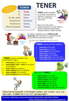 Spanish grammar and vocabulary: Verb Tener (to have) #spanishverbs