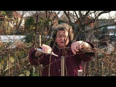 Málna tavaszi metszése | Biokiskertem | A biokert Fruit Garden, Good To Know, Backyard, Couple Photos, Gardening, Kitchen, Youtube, Dress, Plant