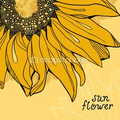 Sunflower vector background greetings card — Stock Image #11827331