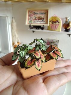 1-12 caladium hortulanum by ~Snowfern on deviantART tutorial at : http://les-miniatures-de-victoria.kazeo.com/?page=articles=212034=3