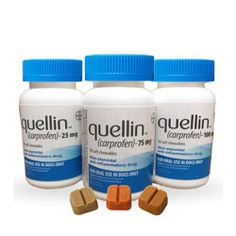 quellin Soft Chewable Tablets for dogs; non-steroidal inflammatory soft chew. Similar to Rimadyl. NEW!