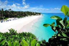 Crane Beach, Barbados - Beautiful Places to Visit Beaches In The World, Places Around The World, The Places Youll Go, Places To See, Around The Worlds, Vacation Places, Dream Vacations, Vacation Spots, Places To Travel