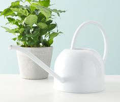 Watering can by Tchibo