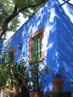 Casa Frida Kahlo, Coyoacan, Mexico City by carlossg, via Flickr