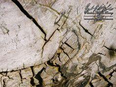 """http://www.pandoramichelelorenz.com/   Umgebung & Lage unserer Location! Ein kleines verstecktes Naturparadies - """"Oldisleben - Ortsteil Sachsenburg in Thüringen""""! Gelegen im Herzen Deutschlands, umgeben von wundervollen Hügeln, weite Felder, Flüssen, Seen, tiefe Wälder, Burgen und Schlösser, ...  findet man hier neben viel herrlicher Naturromantik, auch ganzjährliche Märchenlandschaften!"""